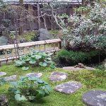 かつて三大花街のひとつとして賑わった新潟・古町(ふるまち)